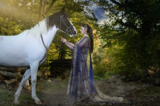 Asian Bride with Horse